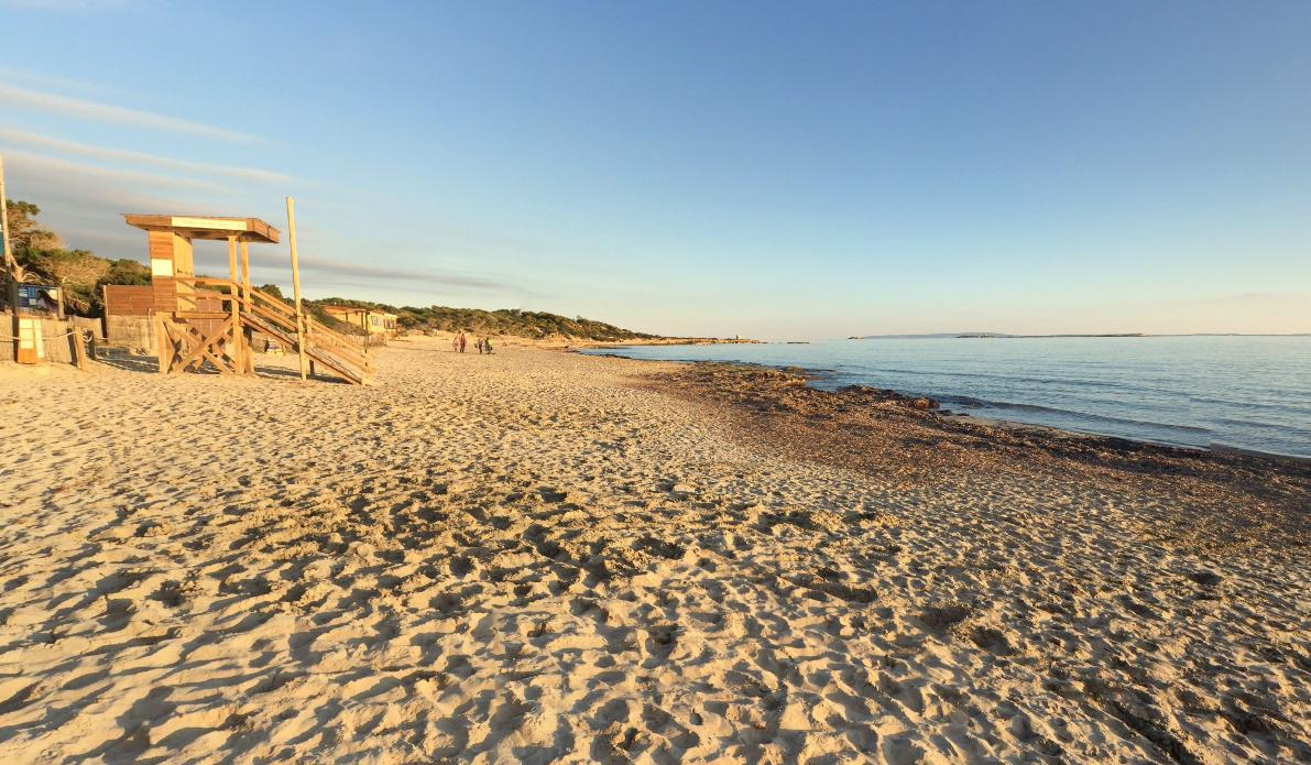 Playa Ses Salines Ibiza